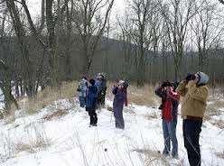 Snow does not stop bird hunters.