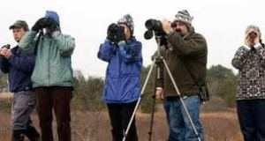 Proper equipment helps the bird counting process.