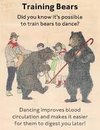 Everyone says bears are unpredictable.