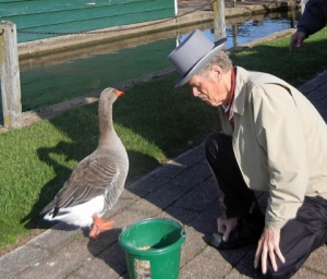 My genius husband deciding a Toulouse Goose would make a good pet.