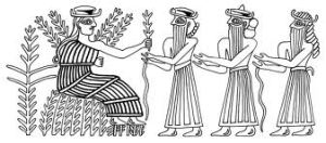 ancient grains 4
