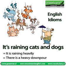 idioms10