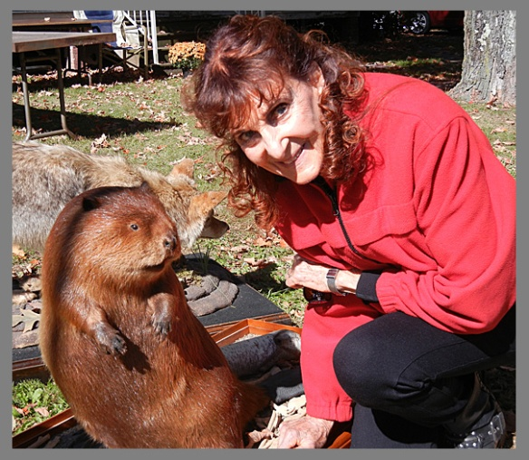 Meeting a beaver at a yard sale is not a daily occurrence, but here a photo to prove it really happened to me.